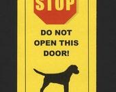 Dangerous Border Terrier Inside -  Has Killed Squeaky Toy