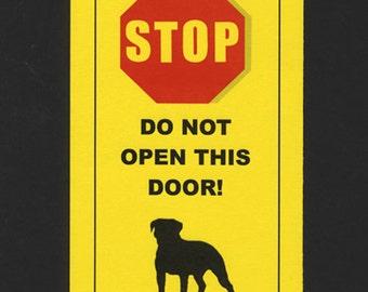 Dangerous American Bulldog Inside - Has Killed Squeaky Toy