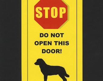 Dangerous Labrador Retriever Inside - Has Killed Squeaky Toy