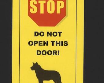 Dangerous Australian Cattle Dog Inside - Has Killed Squeaky Toy