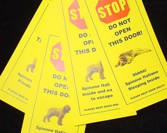 Spinone Italiano's Friendly Alternative to Beware of Dog Signs