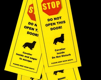 Cavalier King Charles' Friendly Door Alerts Keep Small Dog Safe