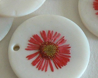 SALE 10 Dry Flower Mother of Pear Shell One of A Kind Pink Red