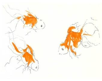 Goldfish - 5 x 7