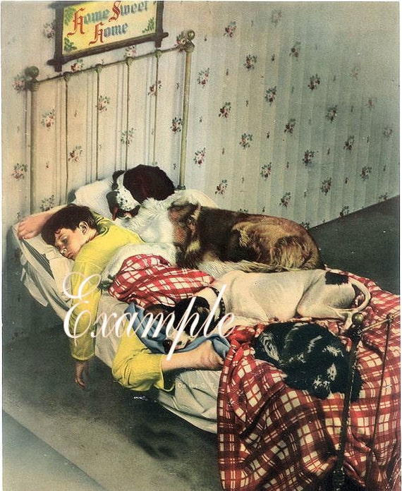 Fabric Blocks,St. Bernard Dog in Bed with Boy,Two Blocks 5 by 7 Inches.Wonderful