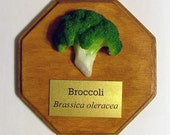 Trophy Produce - Broccoli (RESERVED)