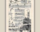 Swimming  art, Gift for swimmers,Retro swimming Print, swimming pool decor, swimmer gift, Seaside Prints, nautical Decor, Nautical art,11x14