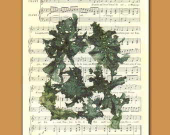 Seaweed art, pressed seaweeds, Wall art Original Collage Seaweed Pressing  fixed on reproduction old sheet music, beach cottage decor, 8x10