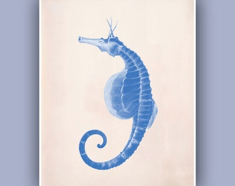 Seahorse Print,  Vintage image hippocampus print, blue print,  Marine Wall Decor, Nautical art,  Mixed Media Collage  Print, Coastal Living