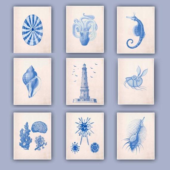 Nautical blue Prints, blue seashells, Sea horse, Lighthouse, Argonauta, beach cottage decor, sea  collection, coastal living, Set  9 Prints