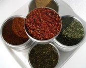 medium global blends spice kit -  flavors from around the world - great gift for a new cook