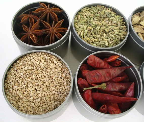 magnetic spice storage. asian gift set. set of eight 4 oz. containers.