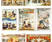 Elephants, Seals, Horses and other circus animals -- piddix digital collage sheet no. 28