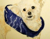Poodle, Toy Greeting Card with Envelope Included (5x3)