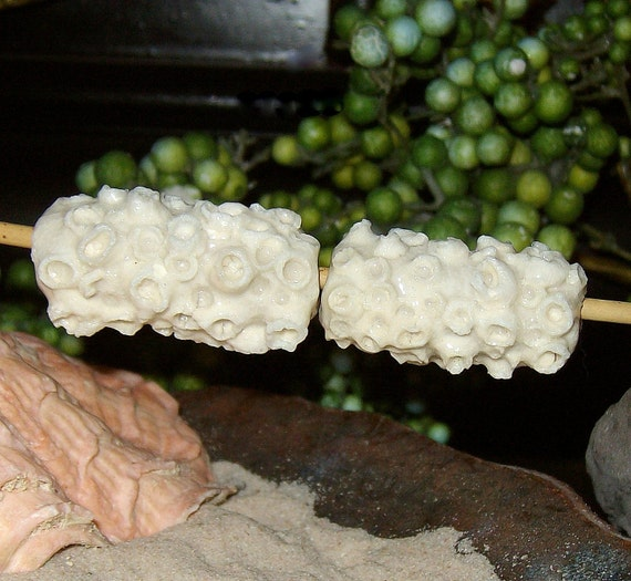 White Barnacle tube beads set of 2 pair  - by Earth N Elements Pottery