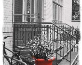 Berlin bike - 5 x 7 photo