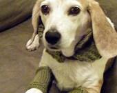 Small dog legwarmers