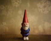 Gnome 6x6 Print