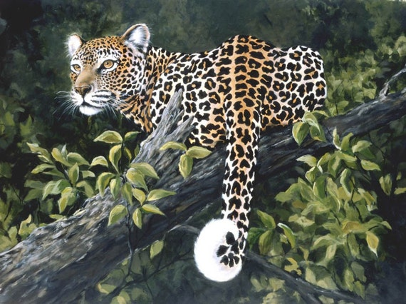 ON THE WATCH  leopard 5x7 big cats wildlife trees jungle  print