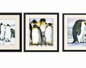 Children Wall Decor Pictures of baby Penguins Print Set  3 fine art watercolor PRINTS of penguins | black & white nursery room decor