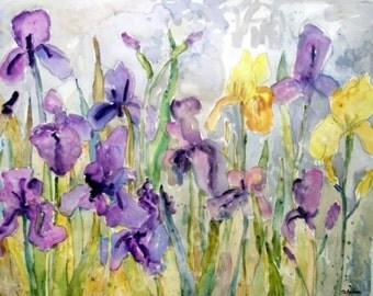 iris painting | purple yellow | watercolor flowers | floral Watercolor | watercolor print | garden painting | flower painting | floral print
