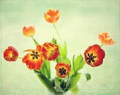 Fine Art Photograph, Flower Photo, Orange Tulips, Bouquet, Spring Flowers, Mint, Tulip Photo, Home Decor, Gardener, Botanical, 8x10 Print