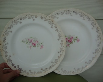 Pretty Vintage Pair of Shabby Chic Plates Cottage Roses Early 1900s Scalloped