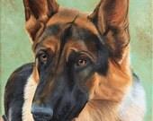 16x20 Custom Life Like Pet Painting Commissioned Pet Portrait Painting DOG CAT HORSE