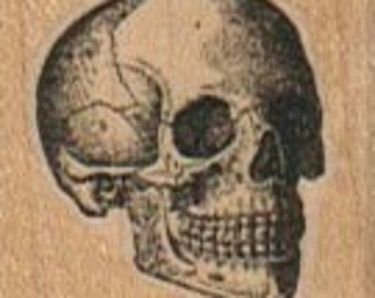 small skull    rubber stamp Day of the Dead rubber stamps    wood mounted, cushioned, cling stamp or unmounted  12381  oddity