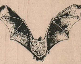 Rubber stamp Halloween vampire bat  unMounted  scrapbooking supplies number 10373