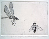 Enter the Dragonfly..My Favorite Bee Movie Original Etching