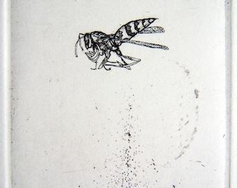 Paper Wasp Original Etching