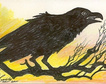 Raven Crow ACEO Card OOAK by Rushing