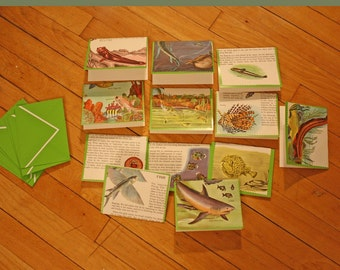 Fish recycled folded card set of 12 A2 size mudskipper lamphrey sunfish