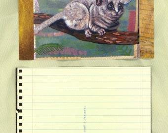 Bushbaby postcard