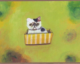 Postcard kitty on a basket olive green calico exotic shorthair persian