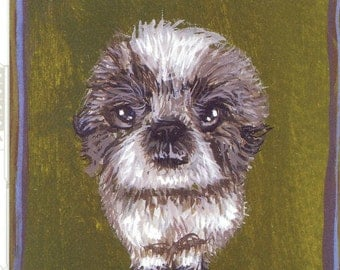 Angry Gizmo postcard lhasa apso mixed breed shaggy