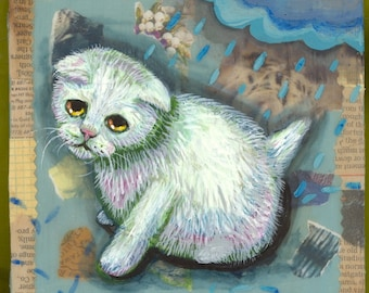 White kitty cat in the rain furry sad cold exotic shorthair
