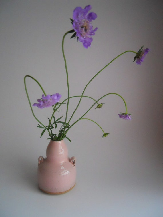 Small pink Vase