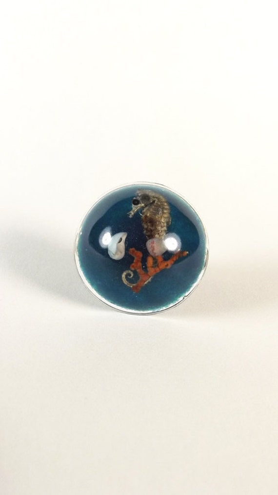 Resin Specimen Ring (Seahorse)