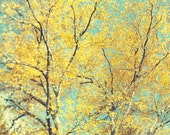Yellow Tree Print, Fall Photography, Autumn Leaves, Colorful Wall Art, Pastel, Fall Art, Nature, 8x8 - The Language of Trees
