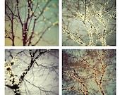 "SALE Tree Prints, Winter Prints, Fine Art Photography, Winter Decor, Tree Art, Wall Art, Fairy Lights, Holiday Decor, ""Night Lights"""
