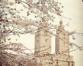 """New York City Photo, Spring in NYC, Central Park, Travel Photography """"When spring came to town"""""""