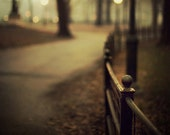 Central Park Fence in Fog, New York Photograph, Autumn, Fall, Night, Fine Art Photography, Black and Gold - Open Me Carefully - EyePoetryPhotography
