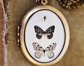 Photo Locket - Paper Kites - Butterflies, Black, Brown, White, Nature, Neutral - Oval Art Locket Grande Edition