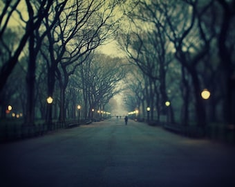 NYC Photography, Central Park at Night, Large Wall Art, Blue New York Art Print, 20x24 Fine Art Photography - The Music of Chance