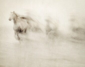 "Horse Art, Abstract Nature Photography, Sepia Photography, Running Horses, Minimalist Abstract Art Print, Large Art ""Ghosts Among Us"""