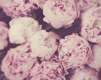 """Flower Photography, Peonies Photo, Pink Floral Wall Art, Botanical Print, Nature Photography, Shabby Chic Wall Decor, """"Persuasion"""""""