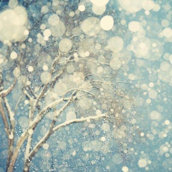 Winter Landscape Photography, Abstract Tree Art Print, Snowflakes, Abstract Snow Photograph, Tree Print, Blue Art, 8x8 - Snowblind