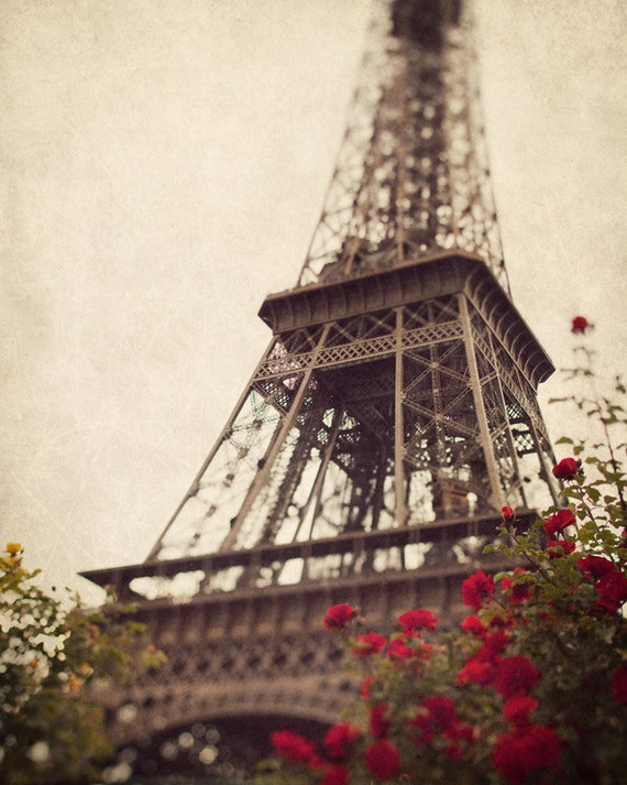 Paris Eiffel Tower Photography Flower Eiffel Tower With Red Flowers